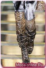 Модная обувь сезона 2011.  Стильная мода, сапоги женские.