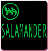 1293.jpg | Обувь Salamander | SALAMANDER